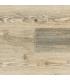 Lichtgrijs verouderd LKAE31801